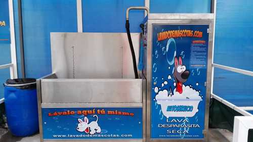 lavadodemascota-3