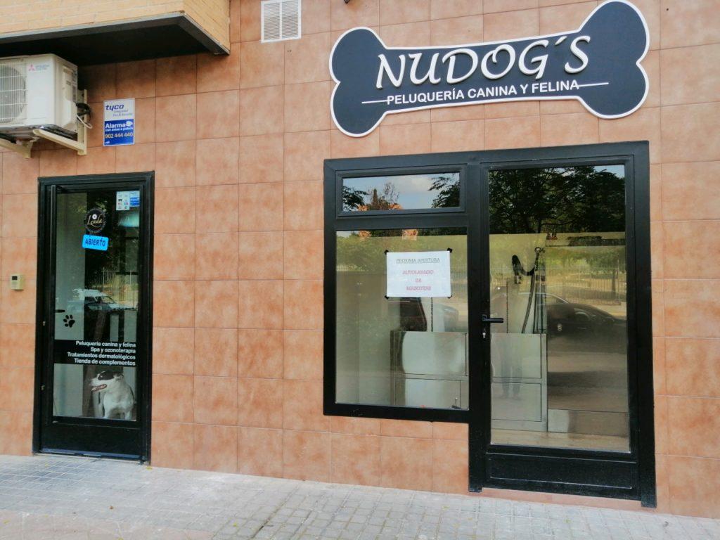NUGOG's