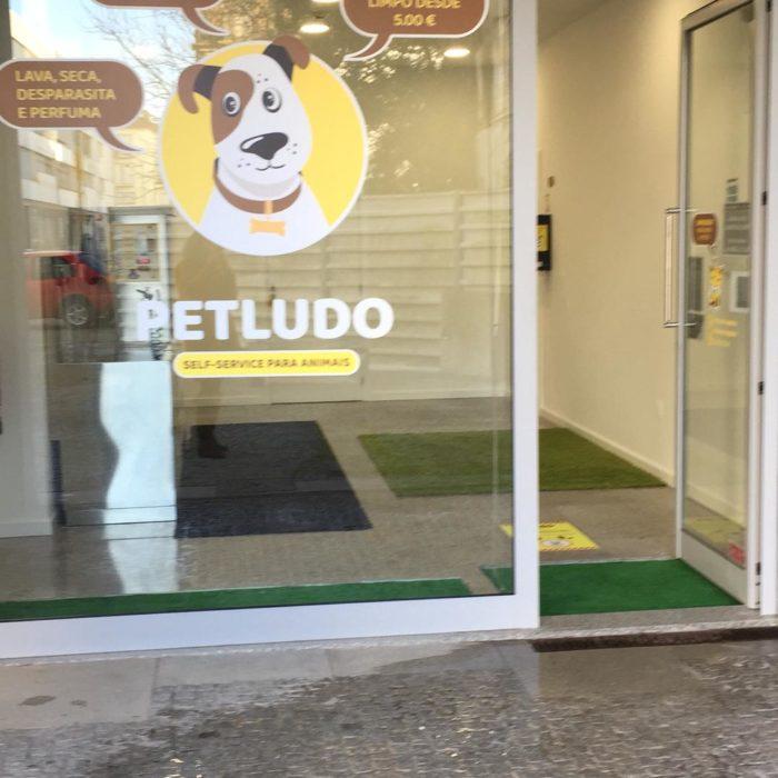 PETLUDO (3)